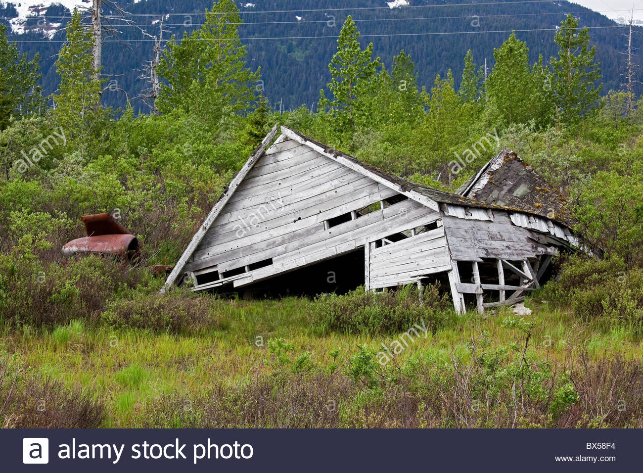 USA, Alaska, Portage. One of the disintegrating original woodframe buildings in Old Portage collapses into the swampy - Stock Image