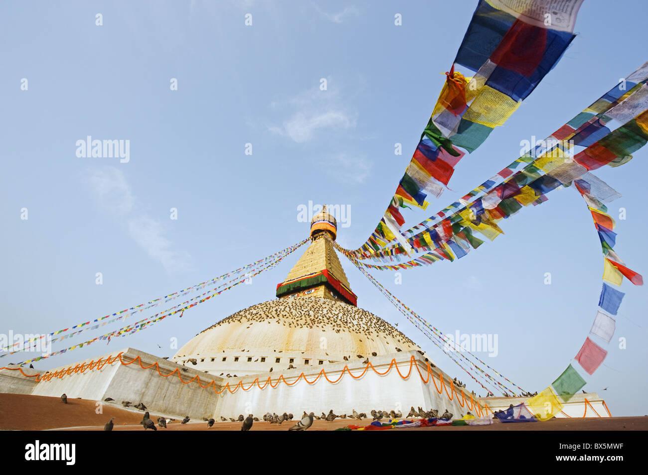 Pigeons and prayer flags on Boudha Stupa (Chorten Chempo), Boudhanath, Kathmandu, Nepal, Asia - Stock Image