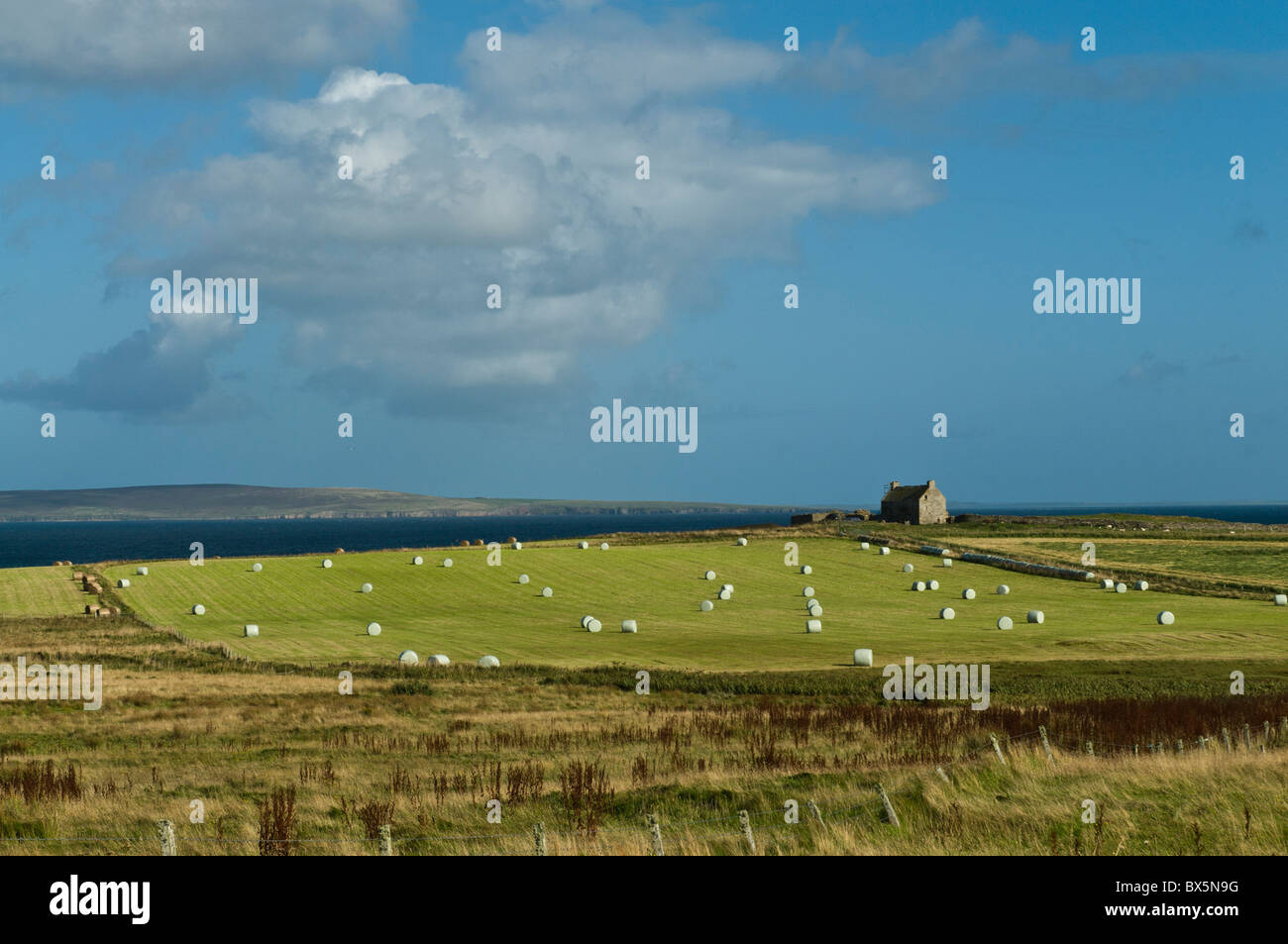 dh  EGILSAY ORKNEY Fields and farmhouse remote uk isolated northern Scotland farm island Stock Photo