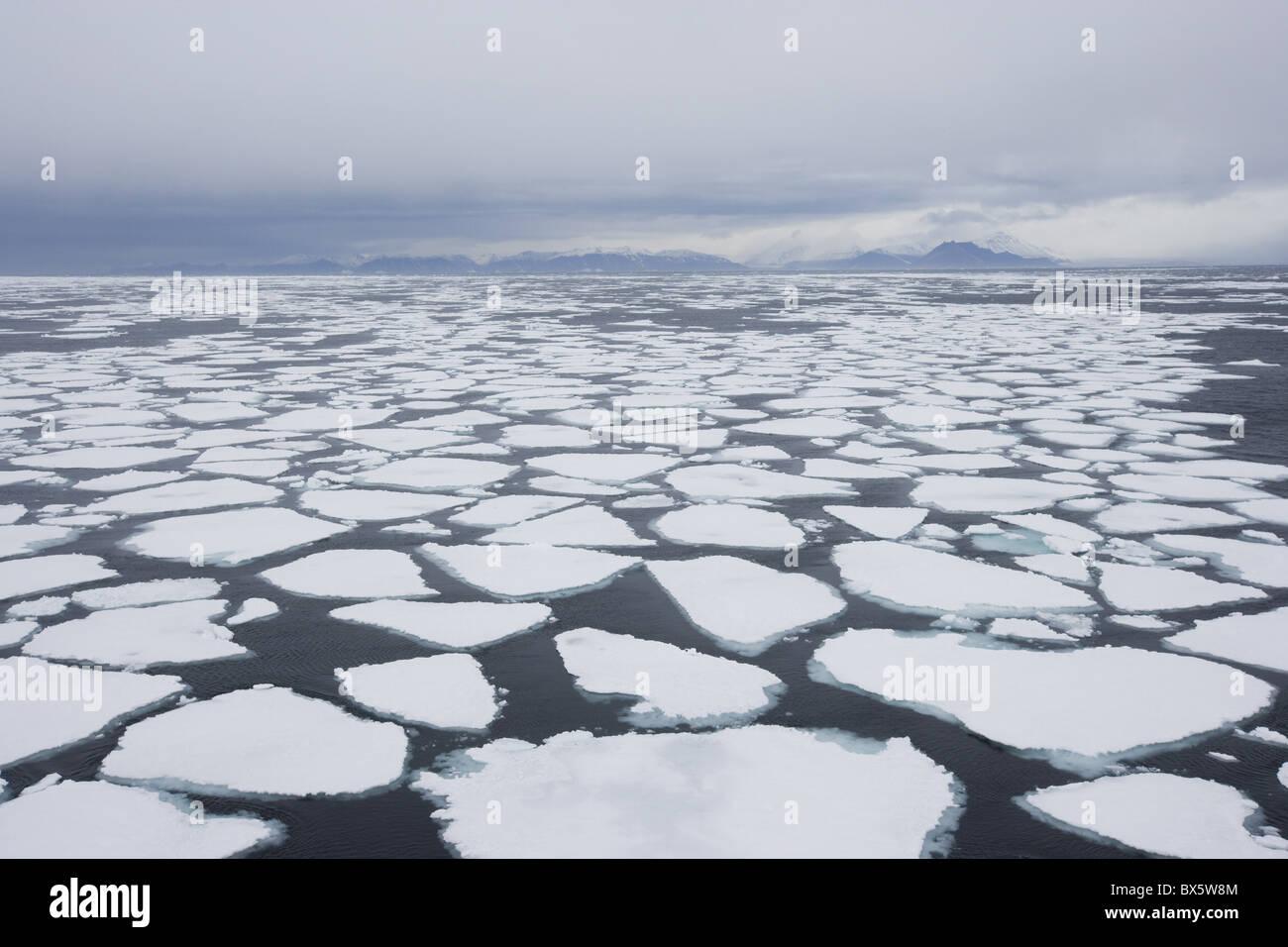 Ice floe, drift ice, Greenland, Arctic, Polar Regions - Stock Image