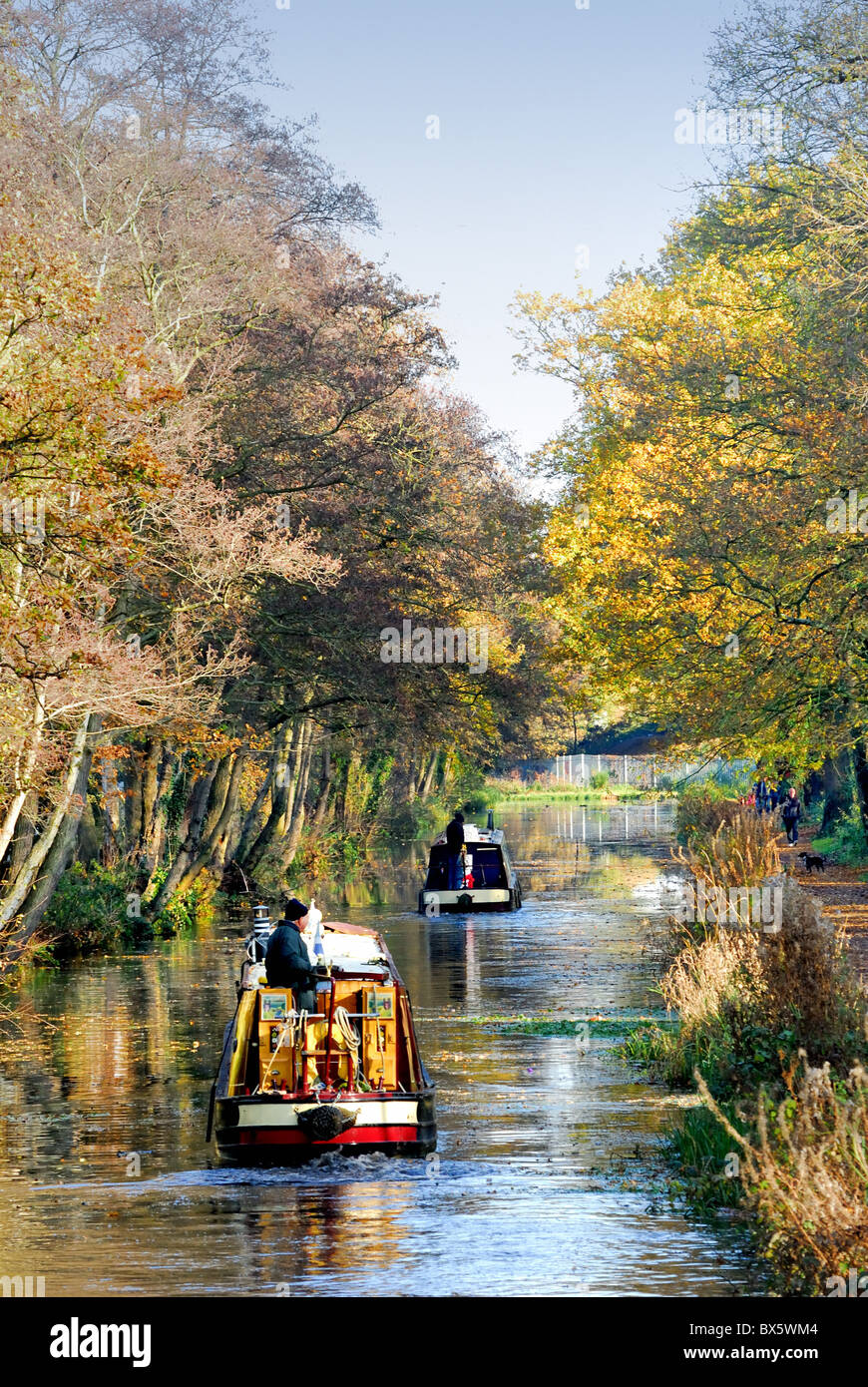 Narrow boats on the Basingstoke canal at Woodham,Surrey UK - Stock Image