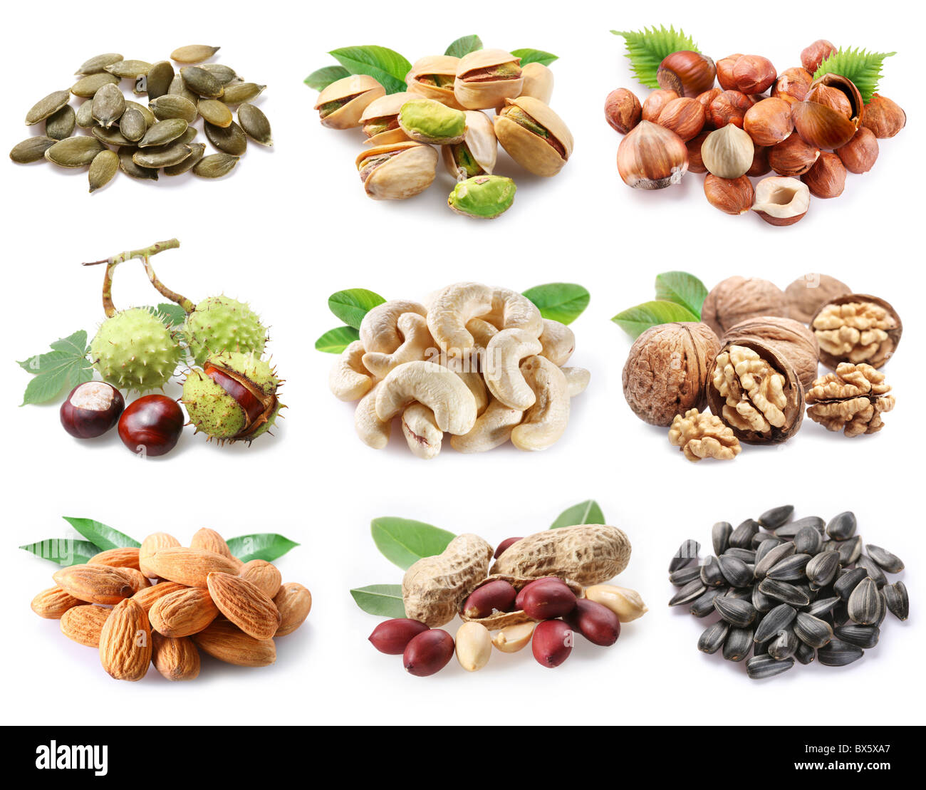 Сollection of ripe nuts and seeds on a white background Stock Photo