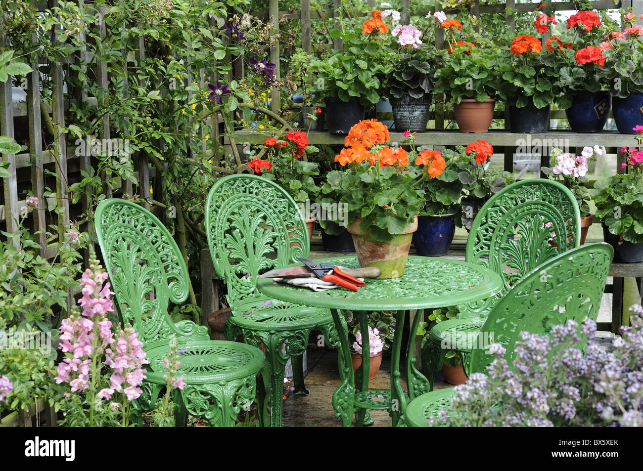 Garden furniture on patio with trellis and potted geraniums norfolk uk july