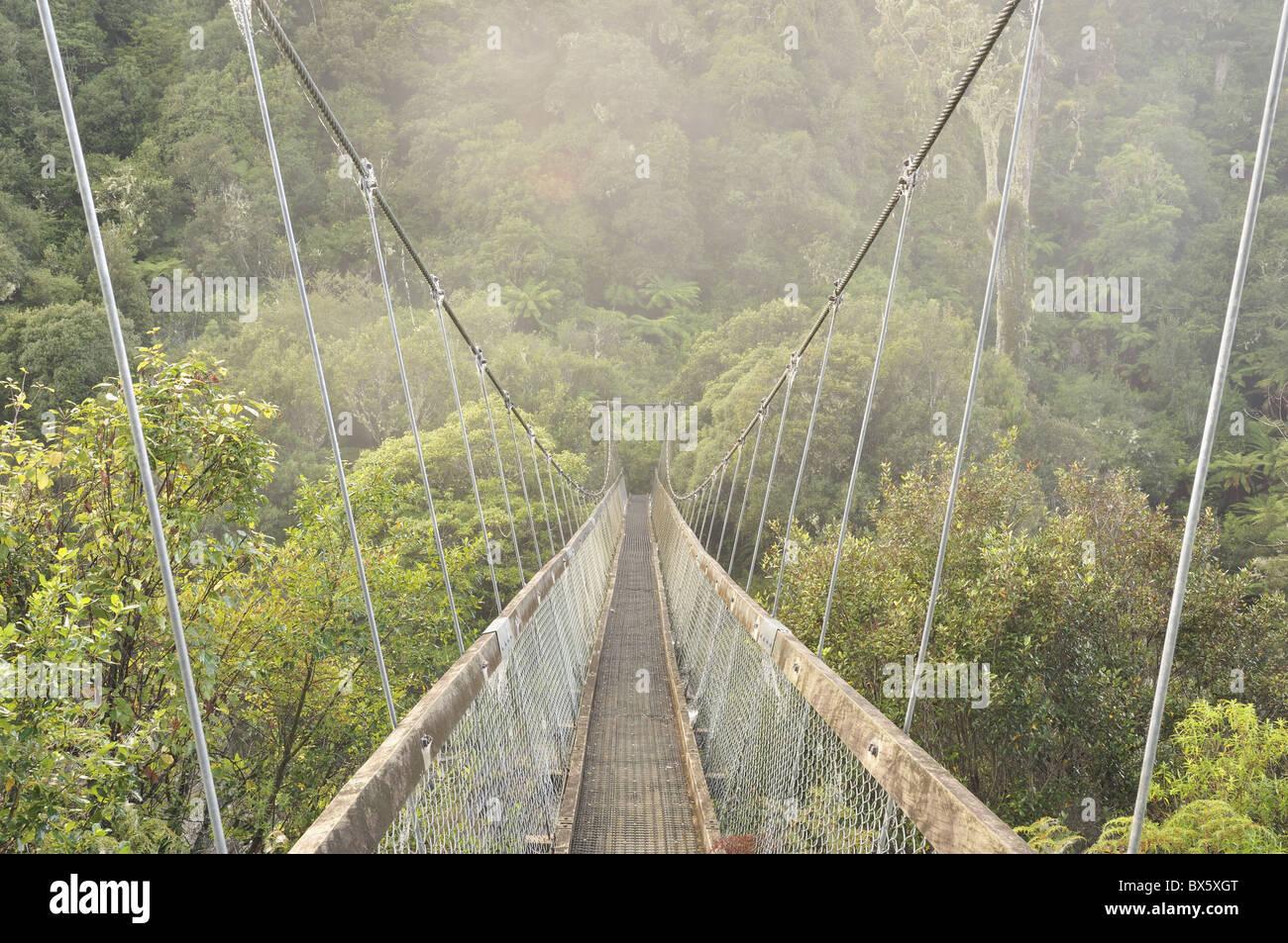 Swingbridge, Motu Falls, Motu, Gisborne, North Island, New Zealand, Pacific - Stock Image