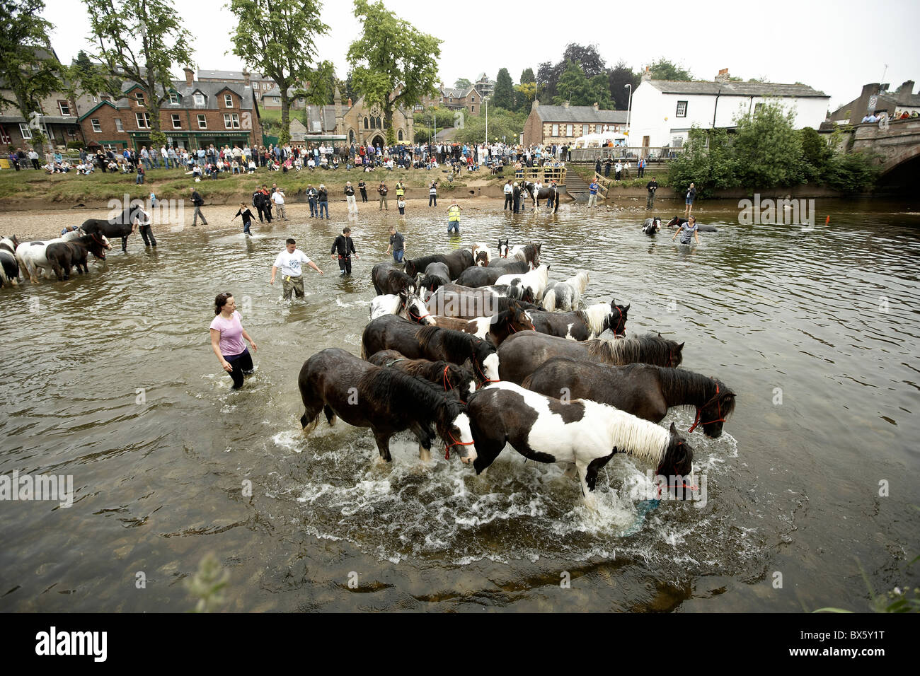 Travellers washing their horses in the river at the Appleby Horse Fair, Cumbria 2010 - Stock Image