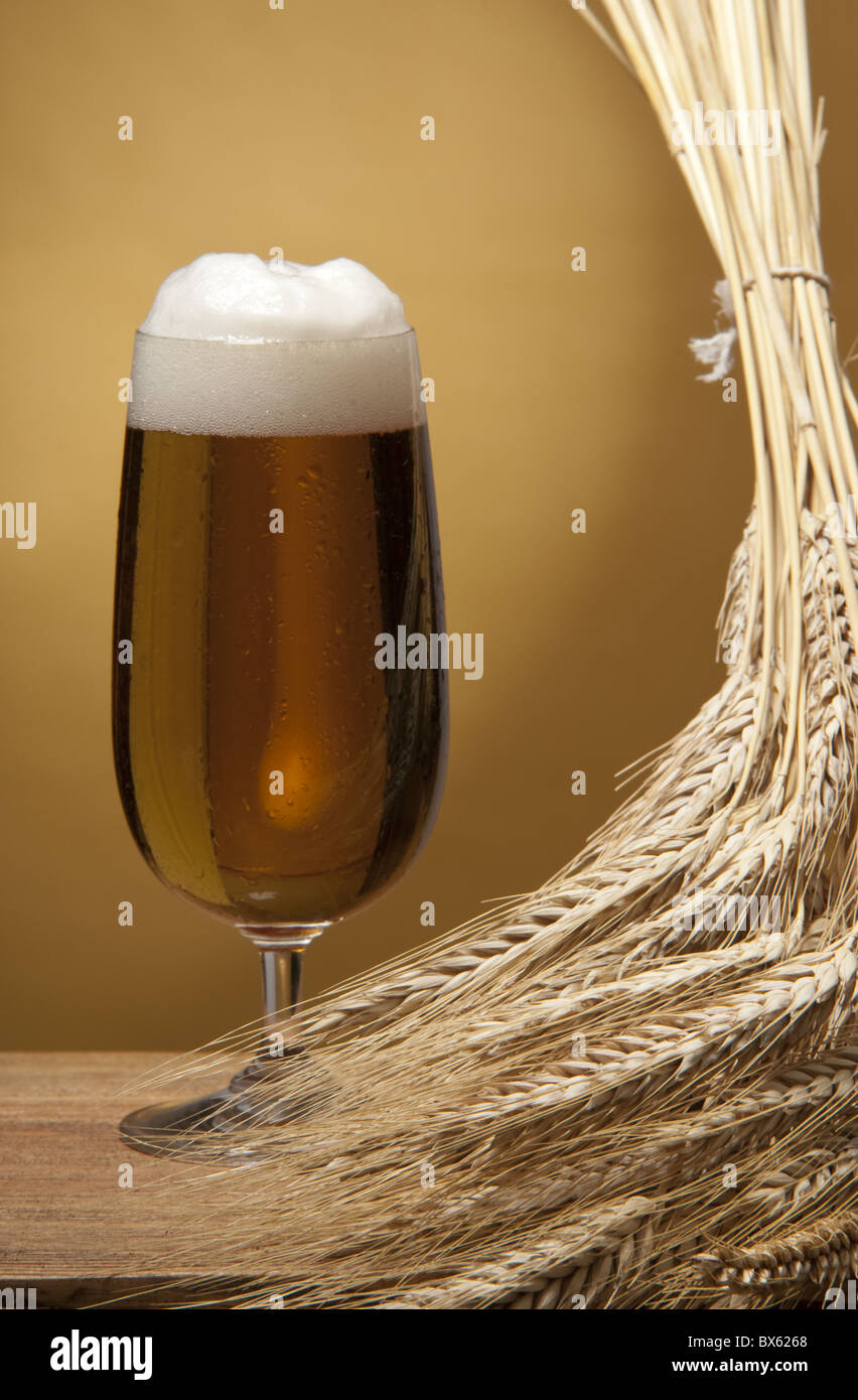 glass of beer - Stock Image