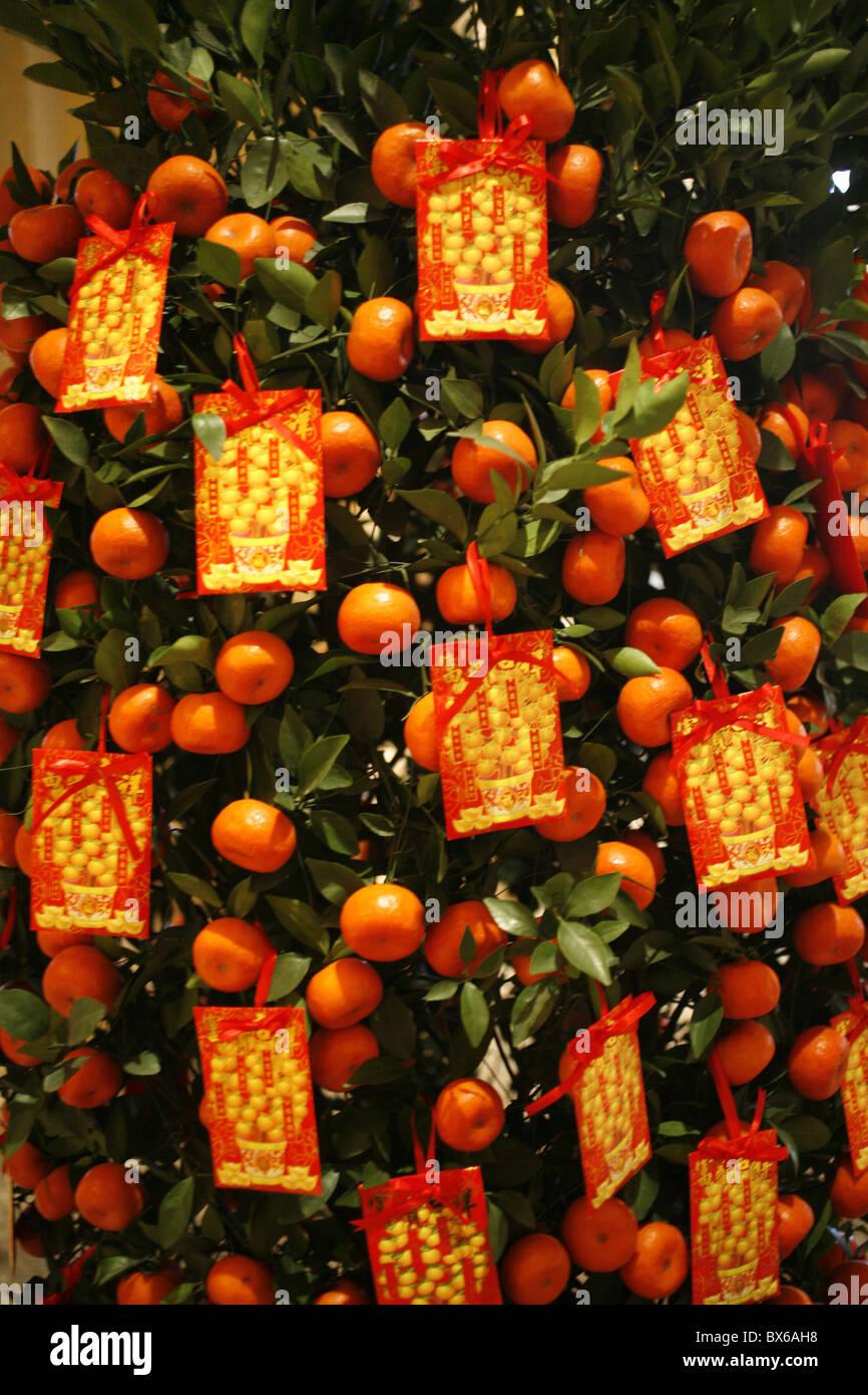 Tangerine Japanese Restaurant