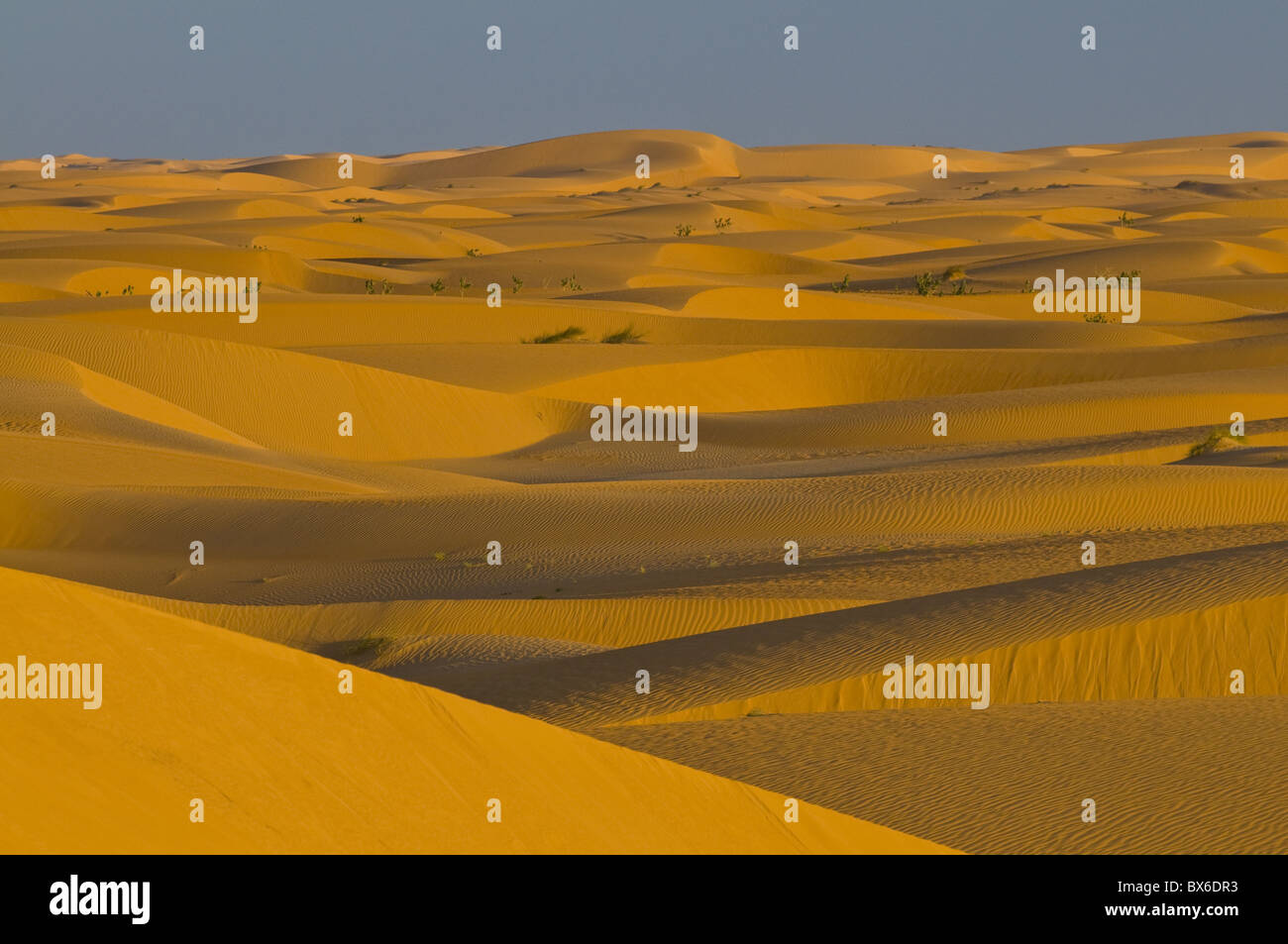 Sand dunes at sunset, near Chinguetti, Mauritania, Africa - Stock Image