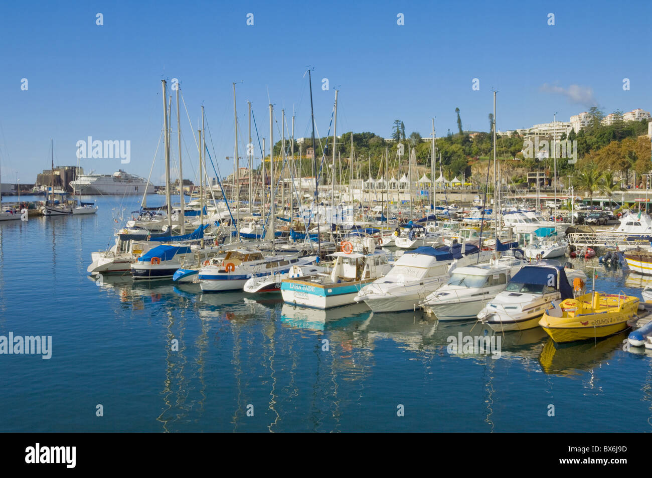Cruise ships and yachts in the harbour at Funchal, Madeira, Portugal, Atlantic, Europe - Stock Image