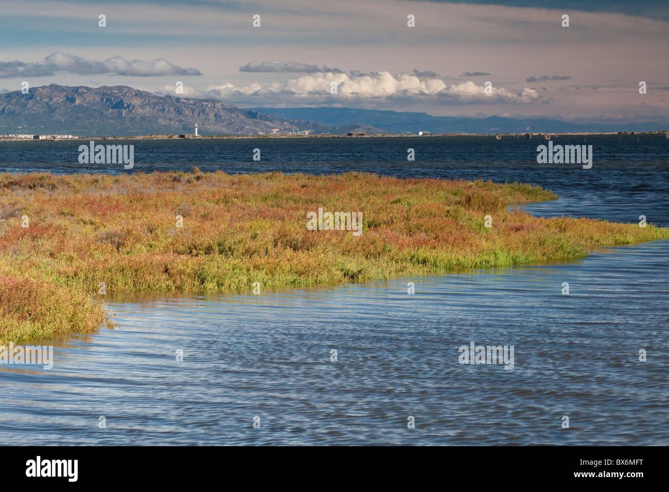El Fangar, Natural Park of Delta de l'Ebre, Tarragona, Spain Stock Photo