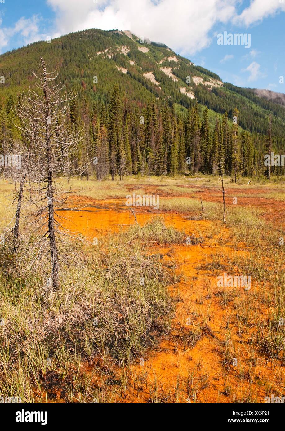 Ochre landscape at The Paint Pots, Kootenay National Park, British Columbia, Canada - Stock Image
