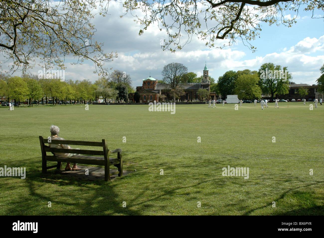 Lady watching cricket match, Kew, West London, England, UK Stock Photo