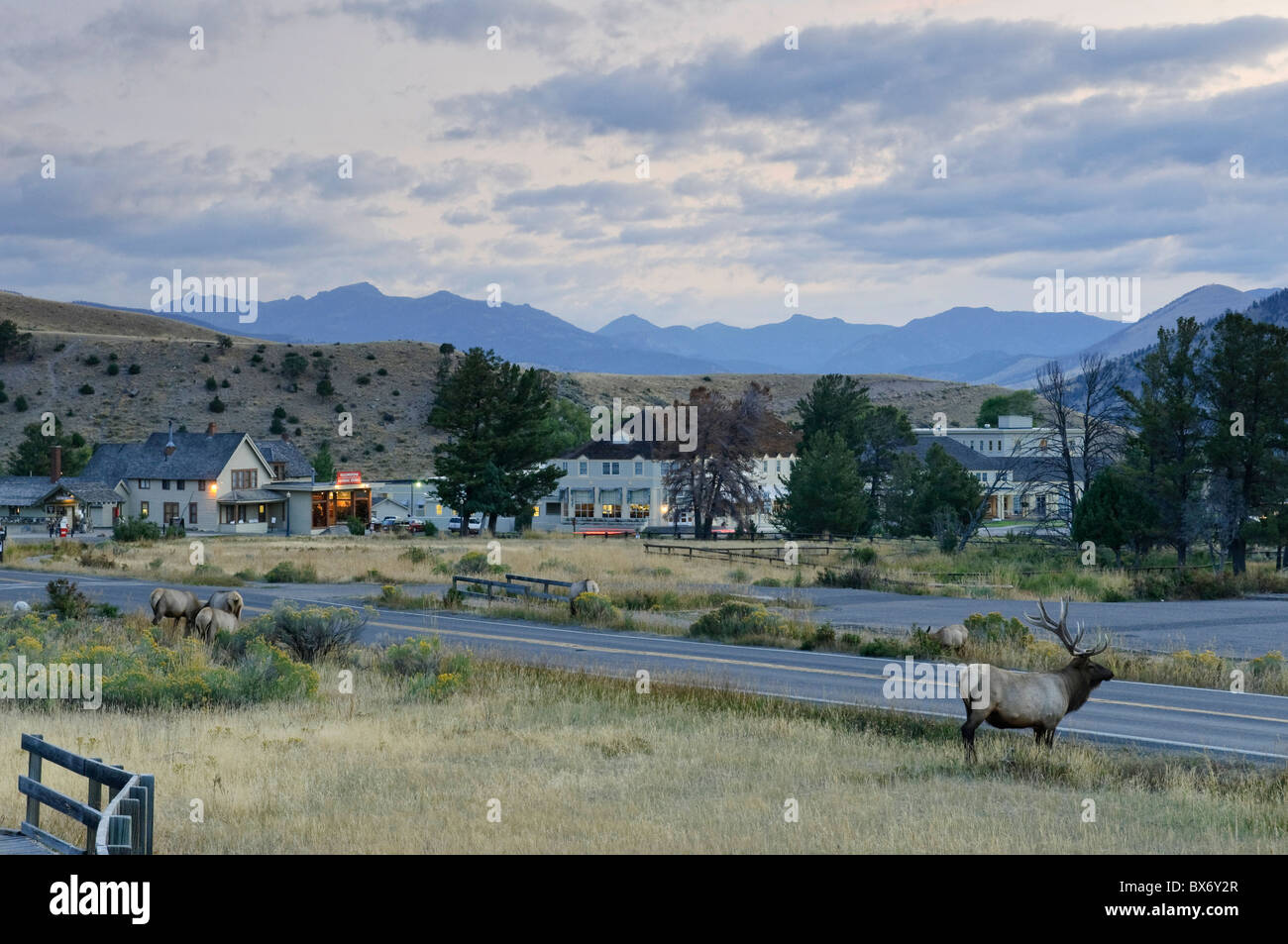 mammoth hot springs village and resort, yellowstone national park