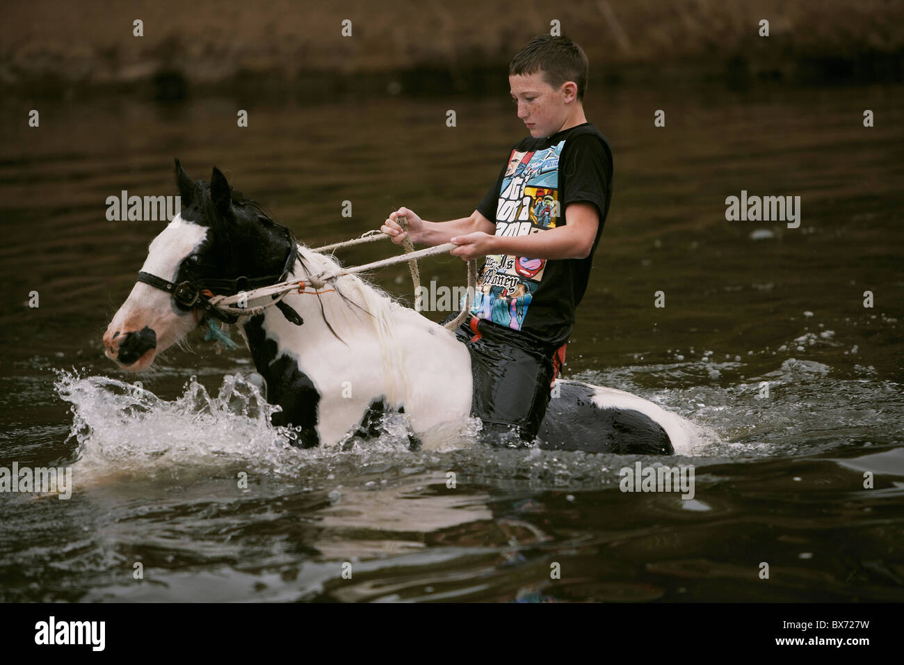 Gypsy traveller riding and washing a horse in the river Eden during the Appleby Horse Fair, Appleby-in-Westmorland, - Stock Image