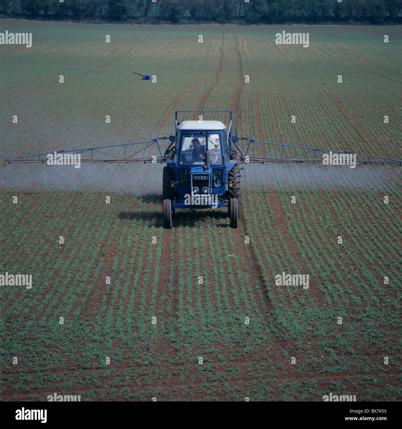 Ford tractor with mounted boom sprayer spraying a seedling pea crop - Stock Image