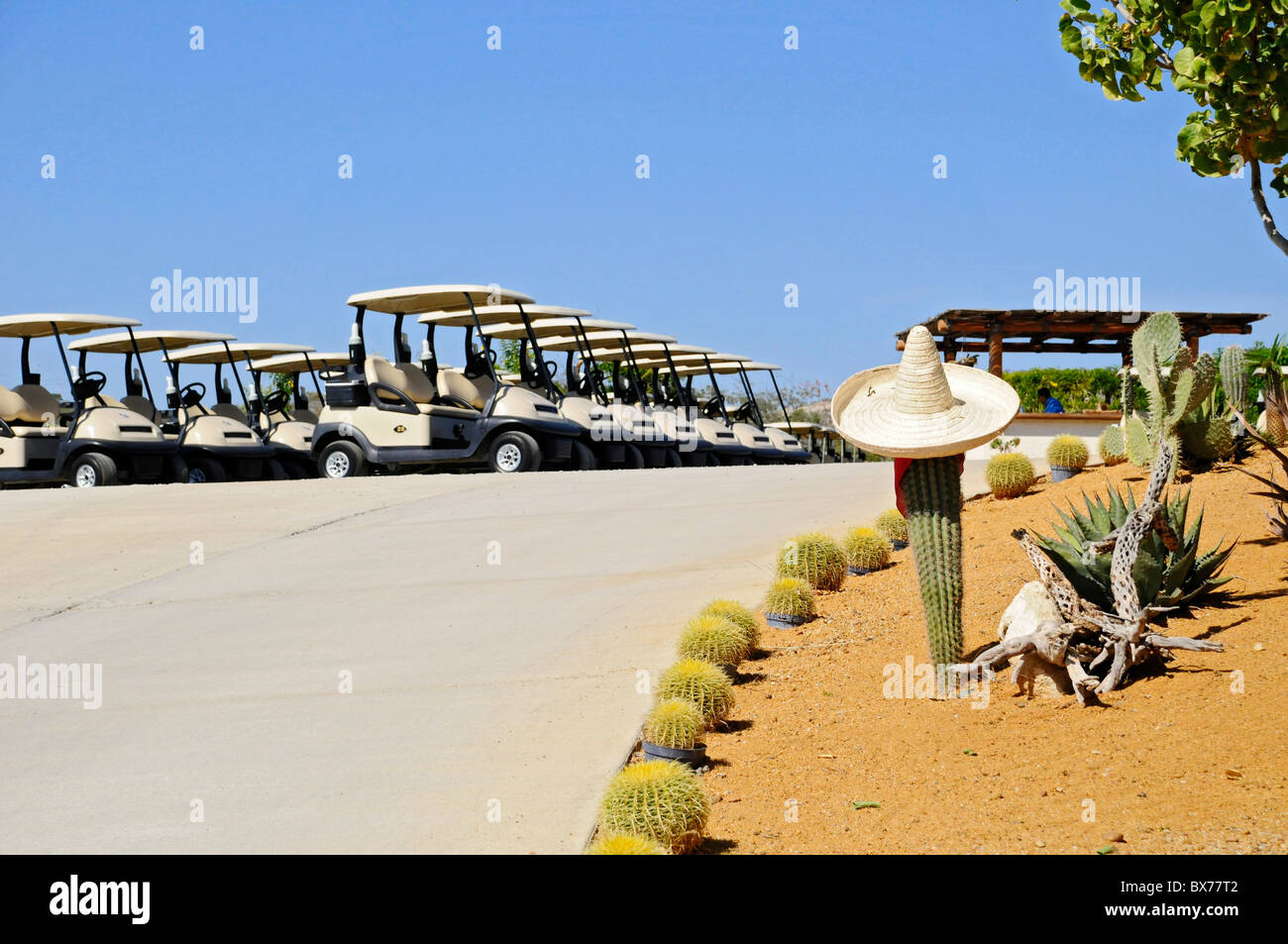 Golf carts and cactus near club house at Puerto Los Cabos Golf Club in San Jose del Cabo, Mexico - Stock Image
