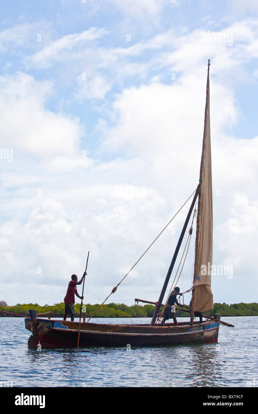 Raising sail on a dhow, Lamu Island, Kenya - Stock Image