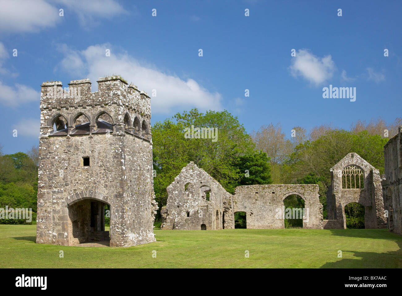 Lamphey Bishops Palace, Pembrokeshire National Park, West Wales, Wales, United Kingdom, Europe - Stock Image