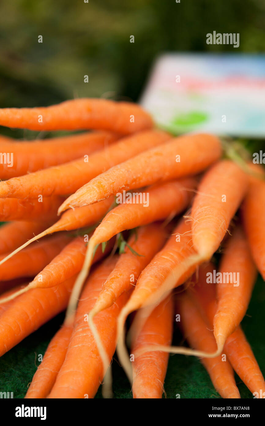 Carrots shown on a market - Stock Image