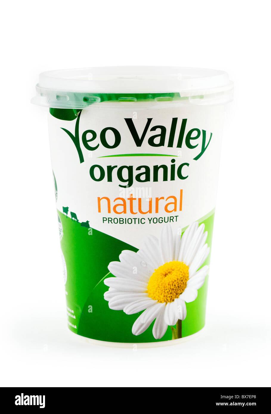 Large Pot of Yeo Valley Organic Yogurt - Stock Image