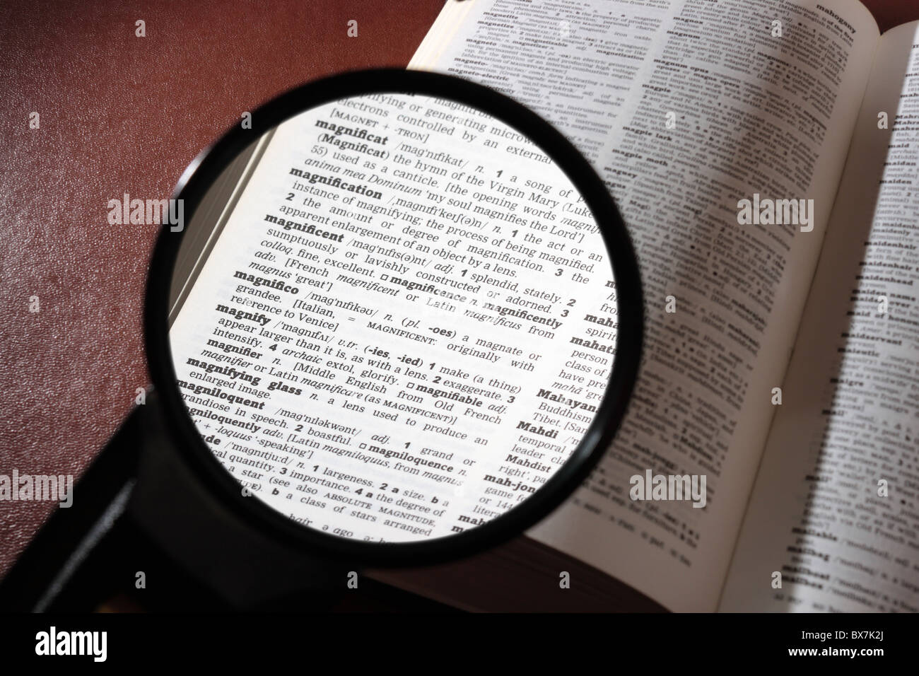 Reading a dictionary with a magnifying glass to read the definition of 'magnification', 'magnify' - Stock Image