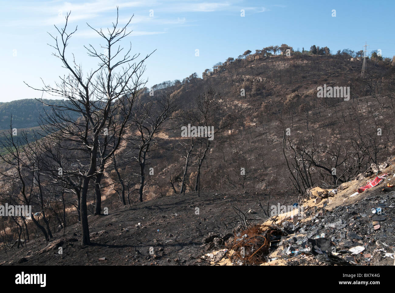 This fire in the forests of Mount Carmel took place between 2 to 5 December 2010. It was the worst fire in Israel - Stock Image