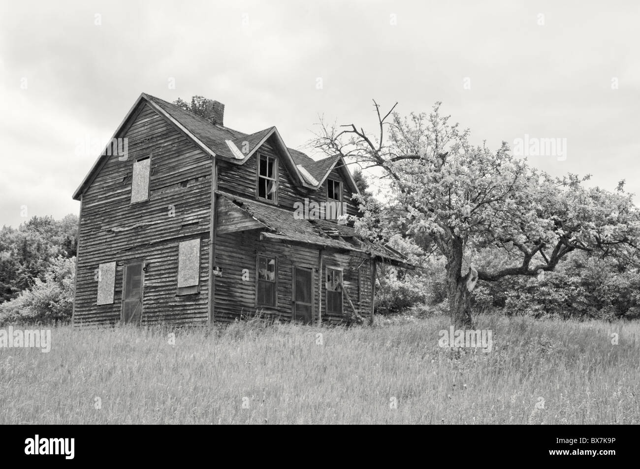 Abandoned farm house haunted and gone to ruin done in black and