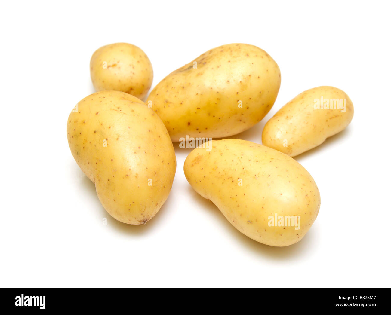 Fresh and clean new potatoes - Stock Image