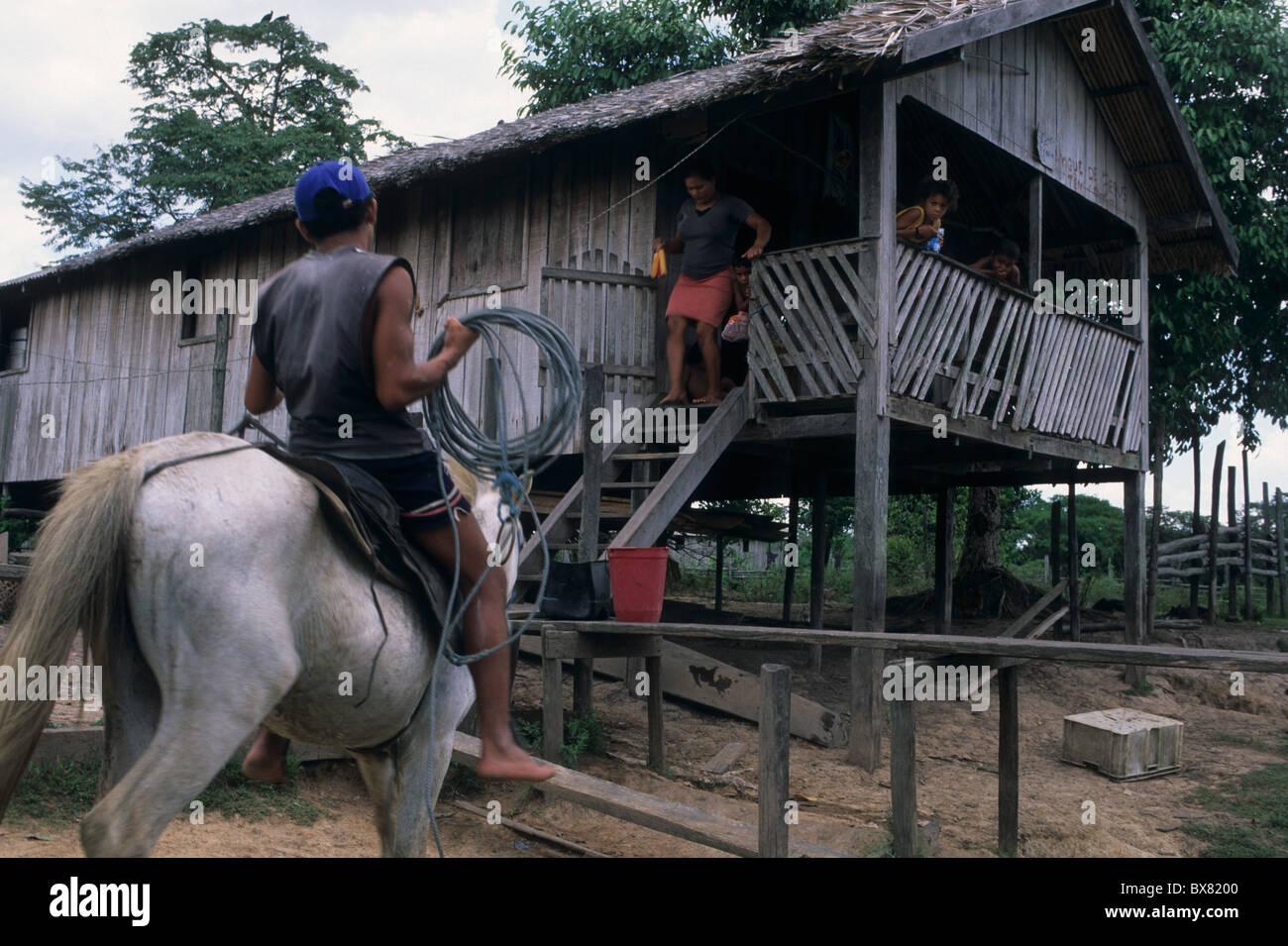 Man on horseback against stilts . Camutins MARAJO ISLAND  State of Pará. BRAZIL (Amazon) - Stock Image