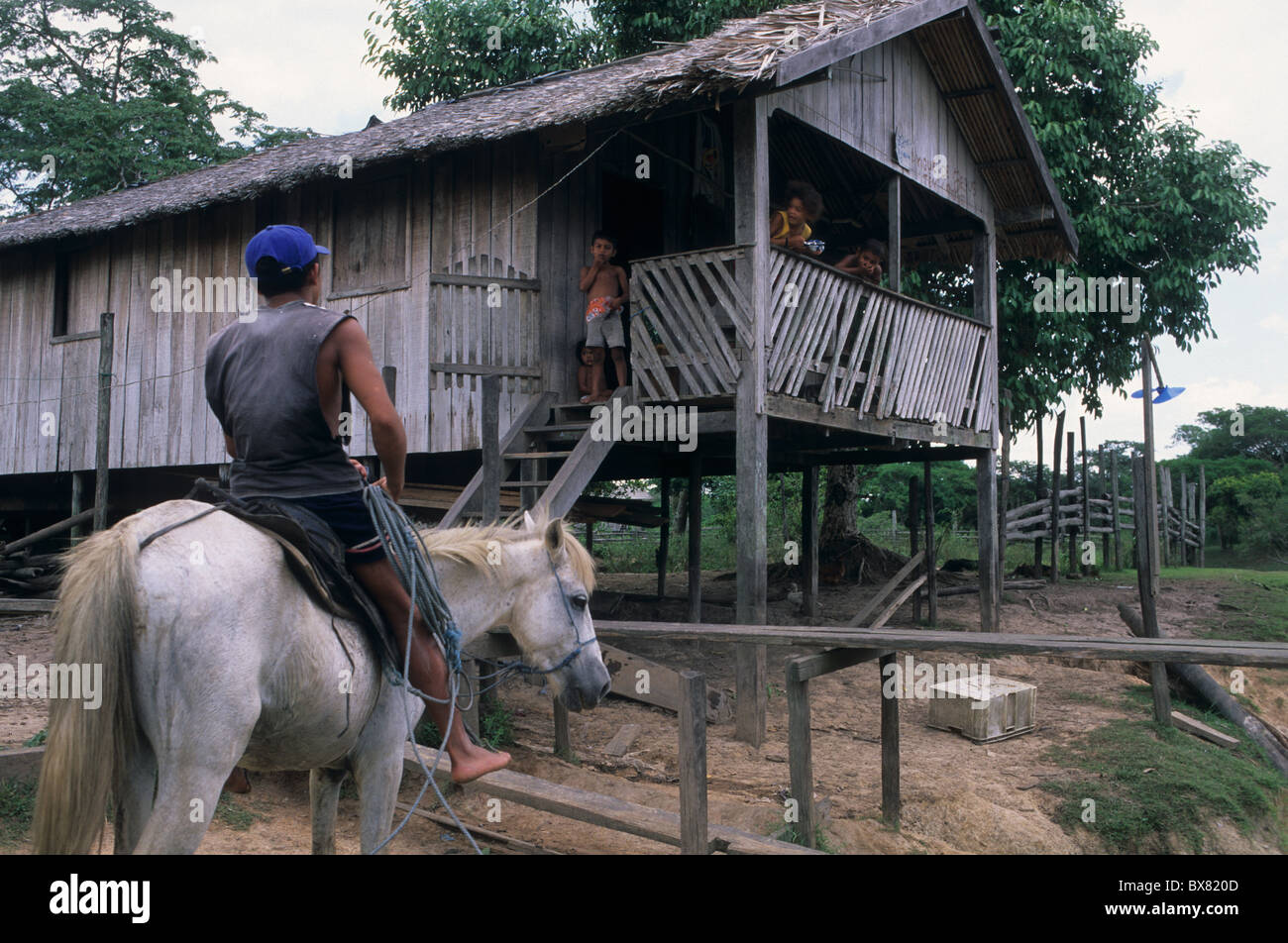 Man on horseback against stilts.Camutins MARAJO ISLAND  State of Pará. BRAZIL (Amazon) - Stock Image