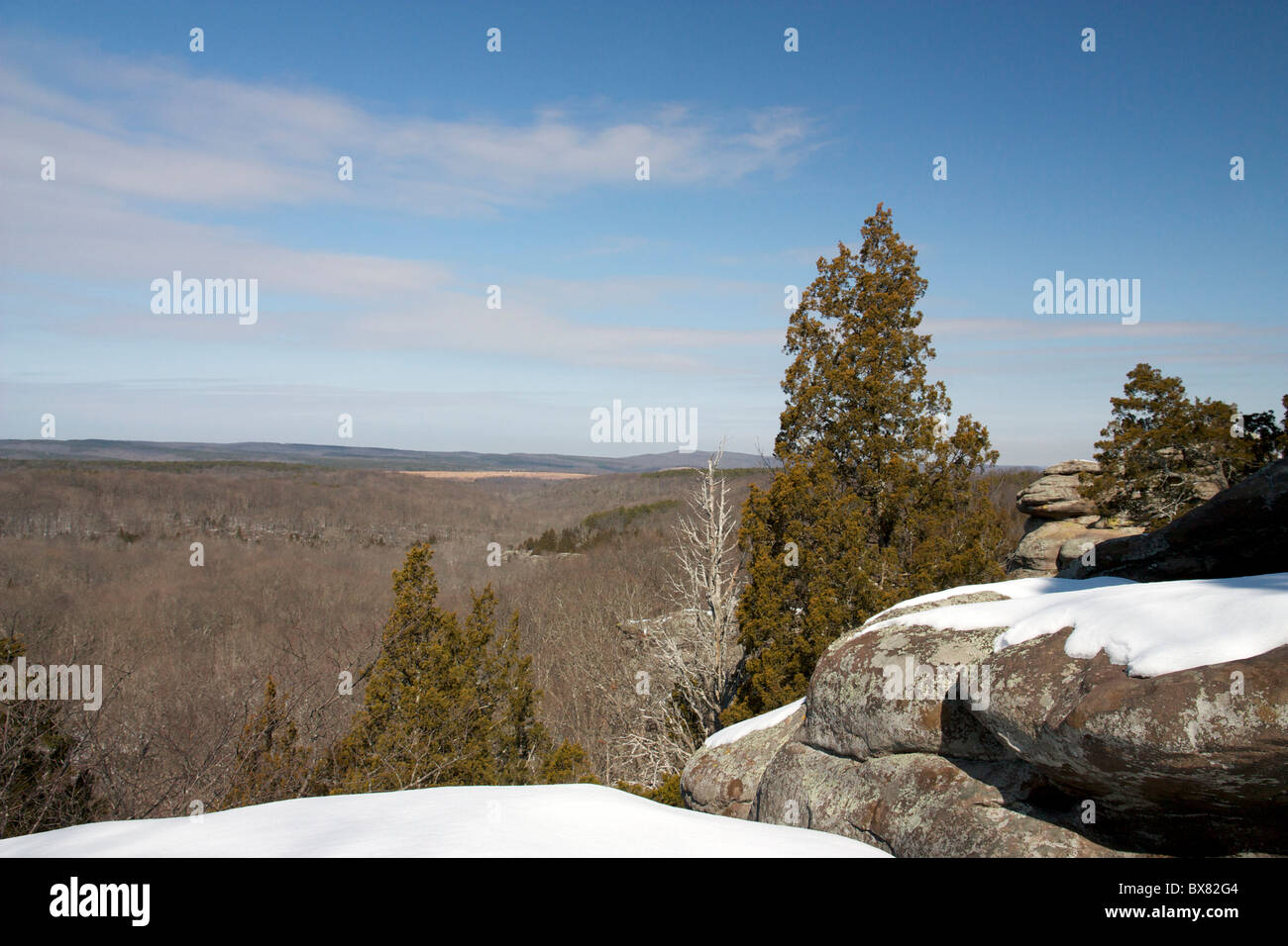 Garden of the Gods Wilderness. Southern Illinois. - Stock Image