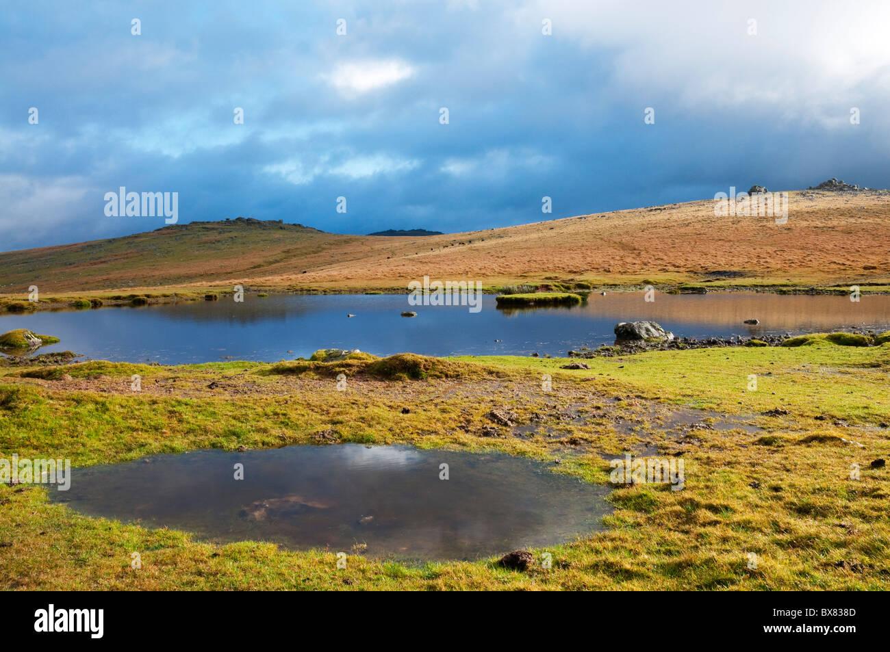 Pond on Dartmoor after heavy rain shower, Devon UK Stock Photo
