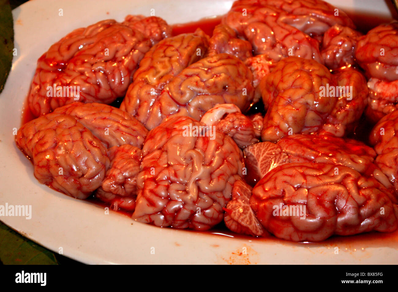 Goat brains( uncooked) on display in a food stall at Murree, Pakistan - Stock Image