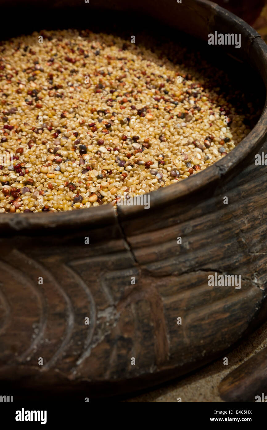 Mississippian period cooking vessel filled with maiz or corn at Cahokia Mounds State Historic Site Museum, Illinois - Stock Image