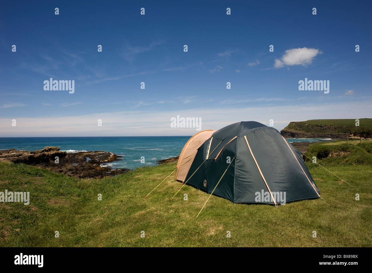 A backpacker's tent looks out over Curio Bay's petrified forest at low tide at the campsite at Curio Bay, - Stock Image