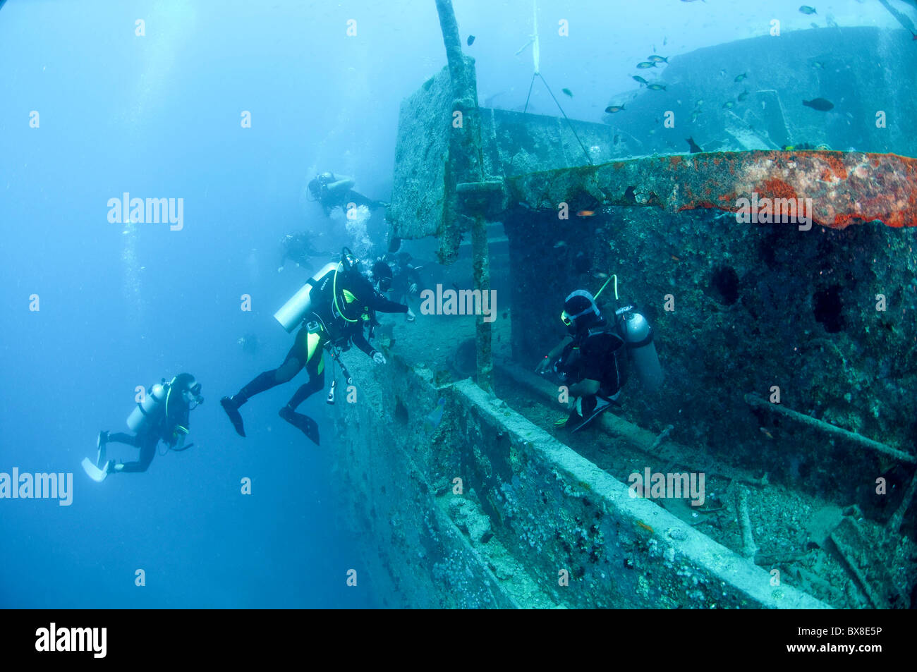 Divers at a shipwreck at Ras Mohammed National Park, Red Sea, Sinai, Egypt, - Stock Image
