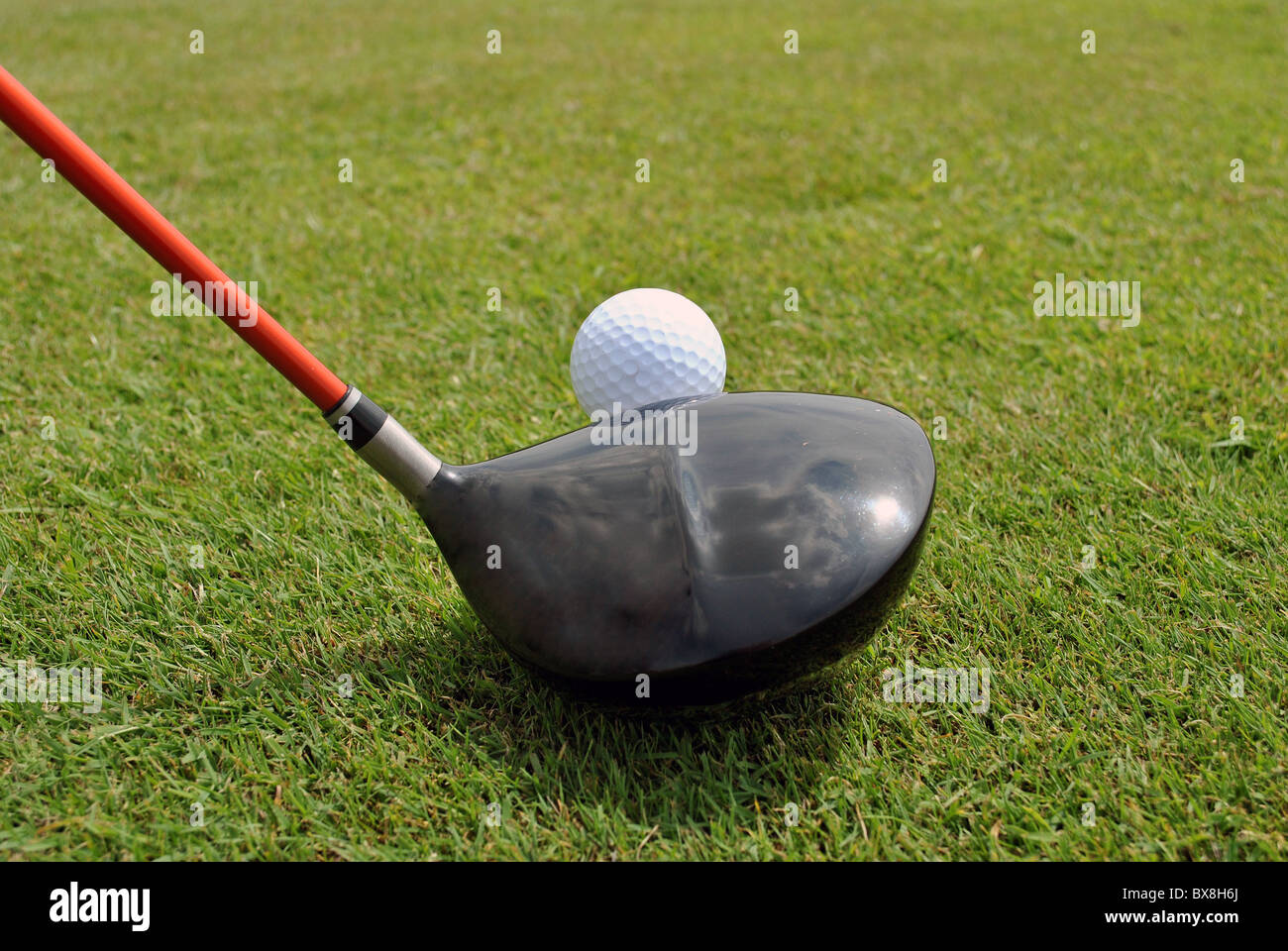 teeing off - Stock Image