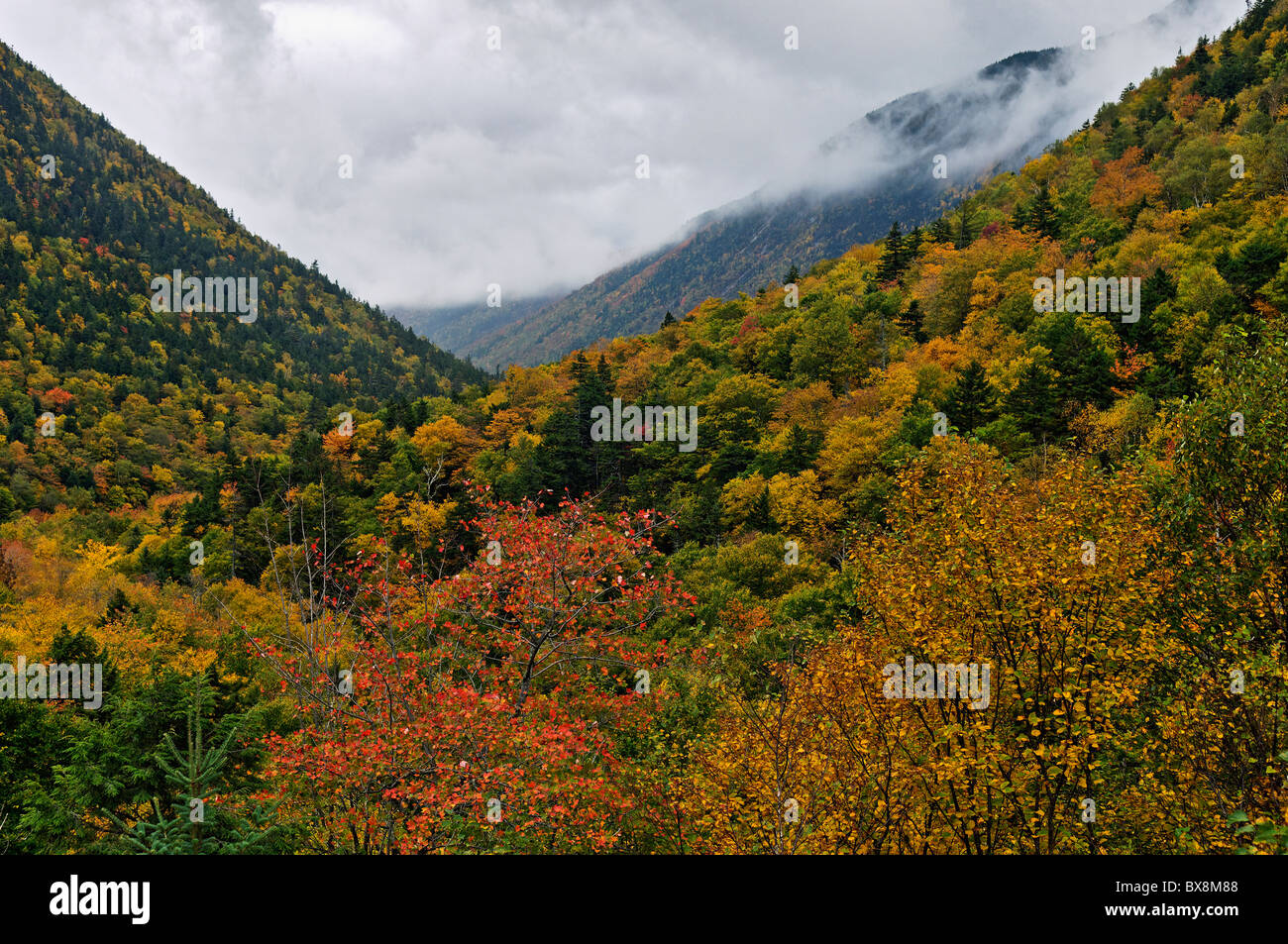 Autumn Color in Crawford Notch in the White Mountains National Forest in Carroll County, New Hampshire Stock Photo