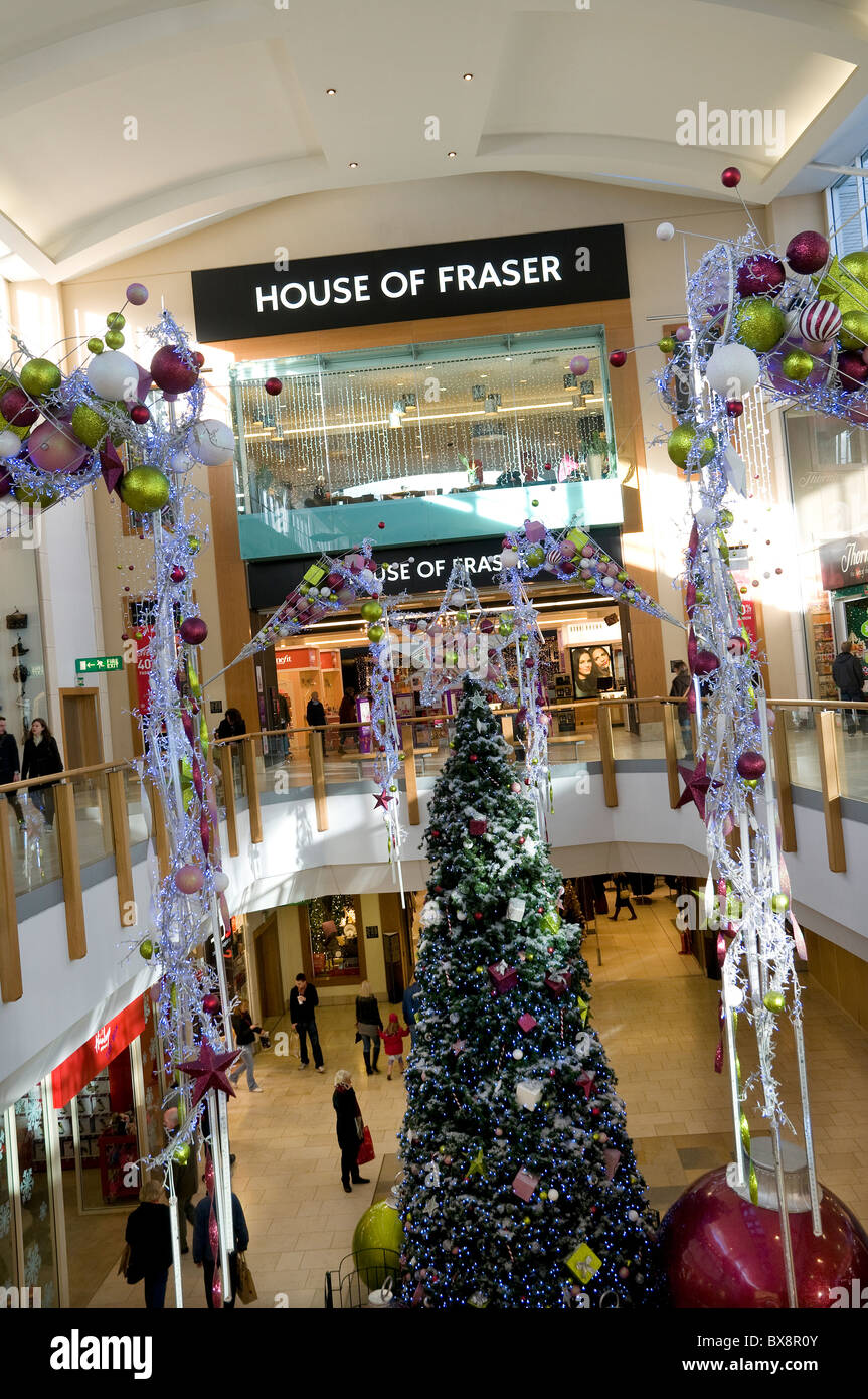 house of fraser store, chapelfield shopping mall, norwich, norfolk, england - Stock Image