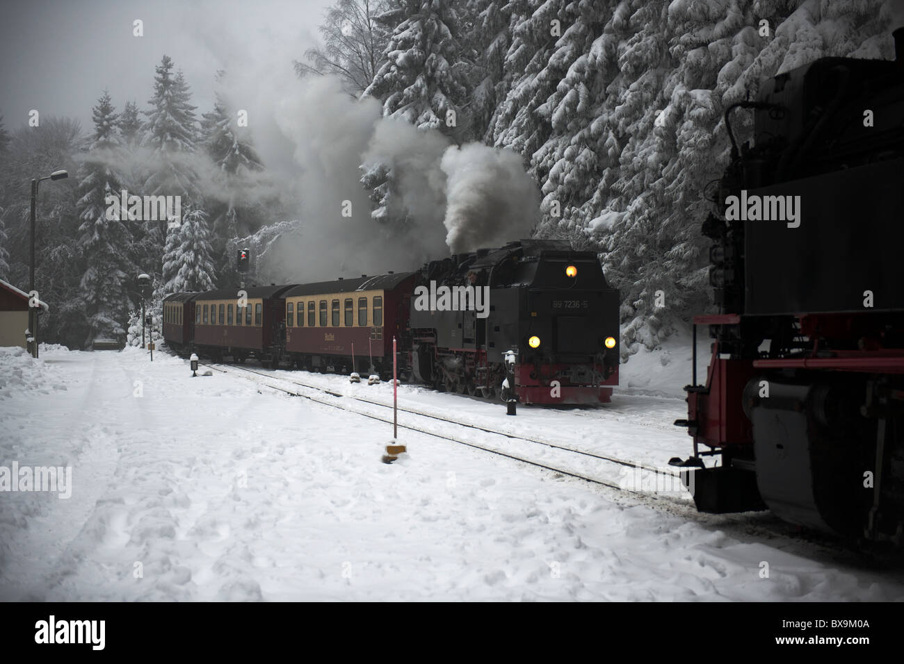 Steam locomotives passing at Schierke in the Harz Mountains-1 - Stock Image