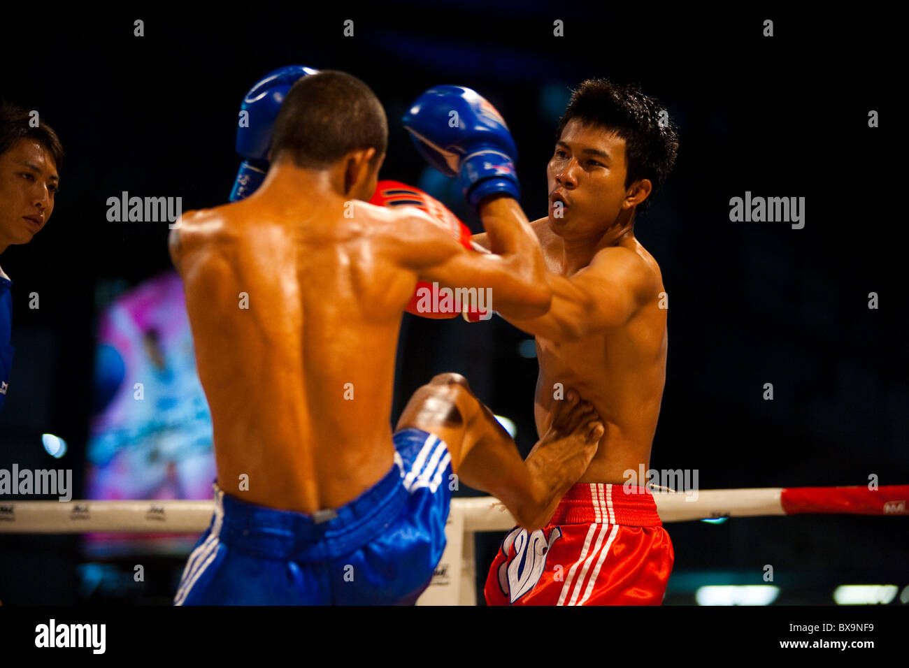 Asian muay thai fighter receiving kick jab to stomach, ribs at amateur outdoor kickboxing event - Stock Image