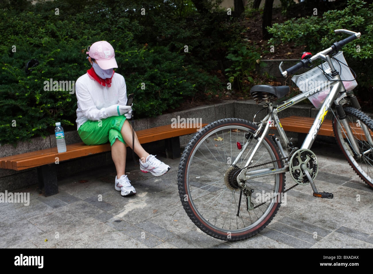 Cyclist pauses to read a phone message, Seoul, South Korea - Stock Image