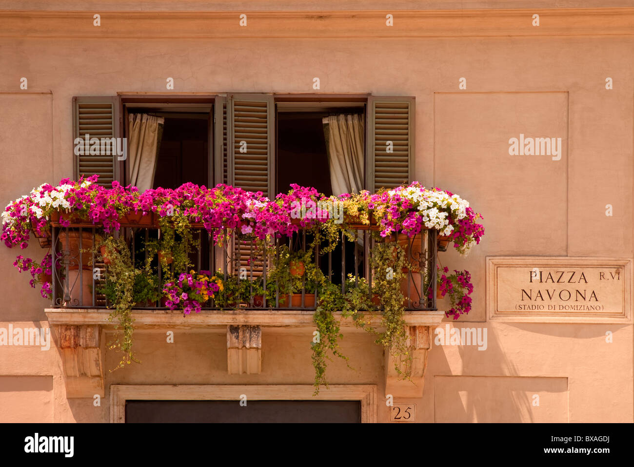 Flowers blooming on a balcony overlooking Piazza Navona in Rome, Lazio Italy - Stock Image