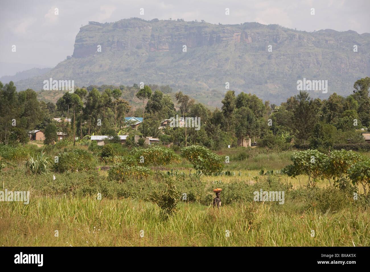 Wanale Ridge is a foothill of Mount Elgon, Mbale, Uganda, East Africa. - Stock Image