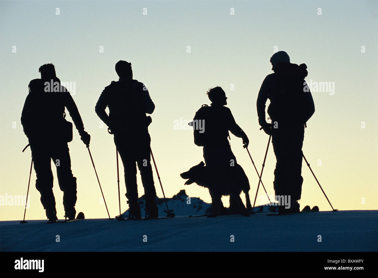 Silhouetted company of skiers with dog, standing on top of hill - Stock Image