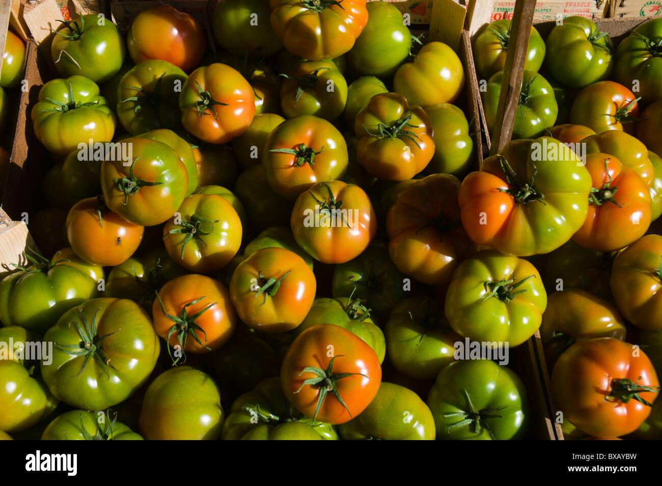 Tomatoes at mercato di Ballaro market Albergheria district central Palermo Sicily Italy Europe - Stock Image