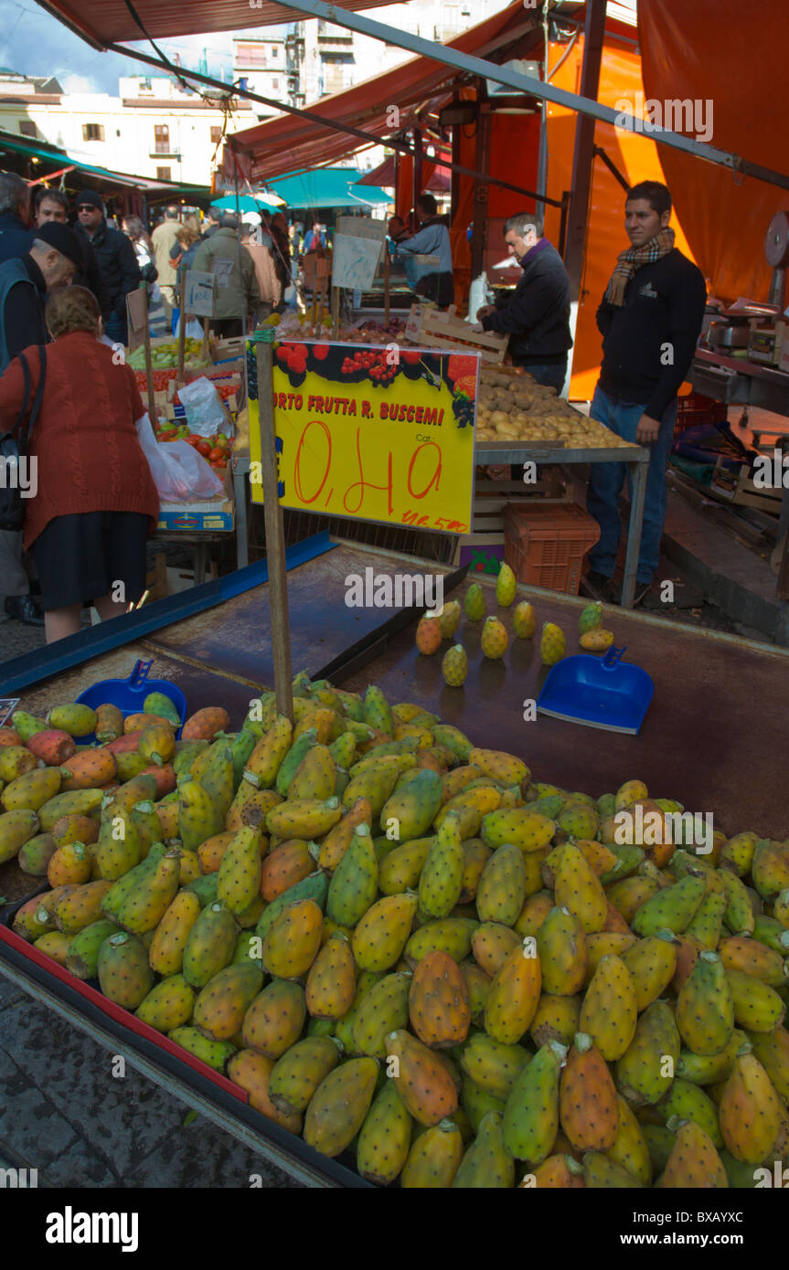 Cactus figs at Mercato di Ballaro market Albergheria district central Palermo Sicily Italy Europe - Stock Image