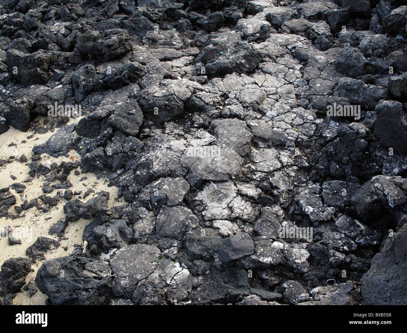 Bitumen on a rocky coast following an oil spill, Lanzarote, Canary Islands, Spain, Europe - Stock Image