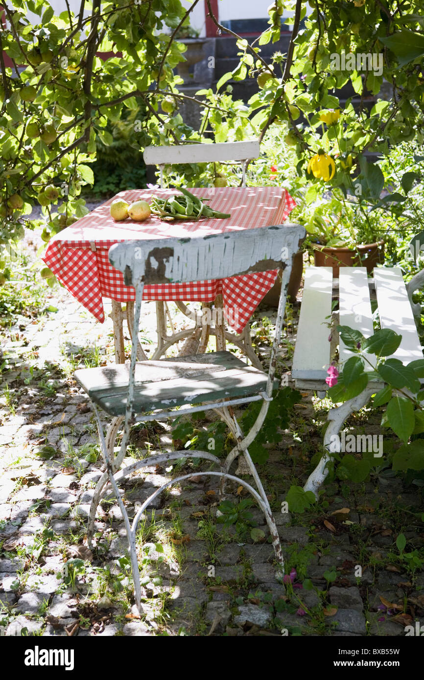 Table with chairs in garden - Stock Image