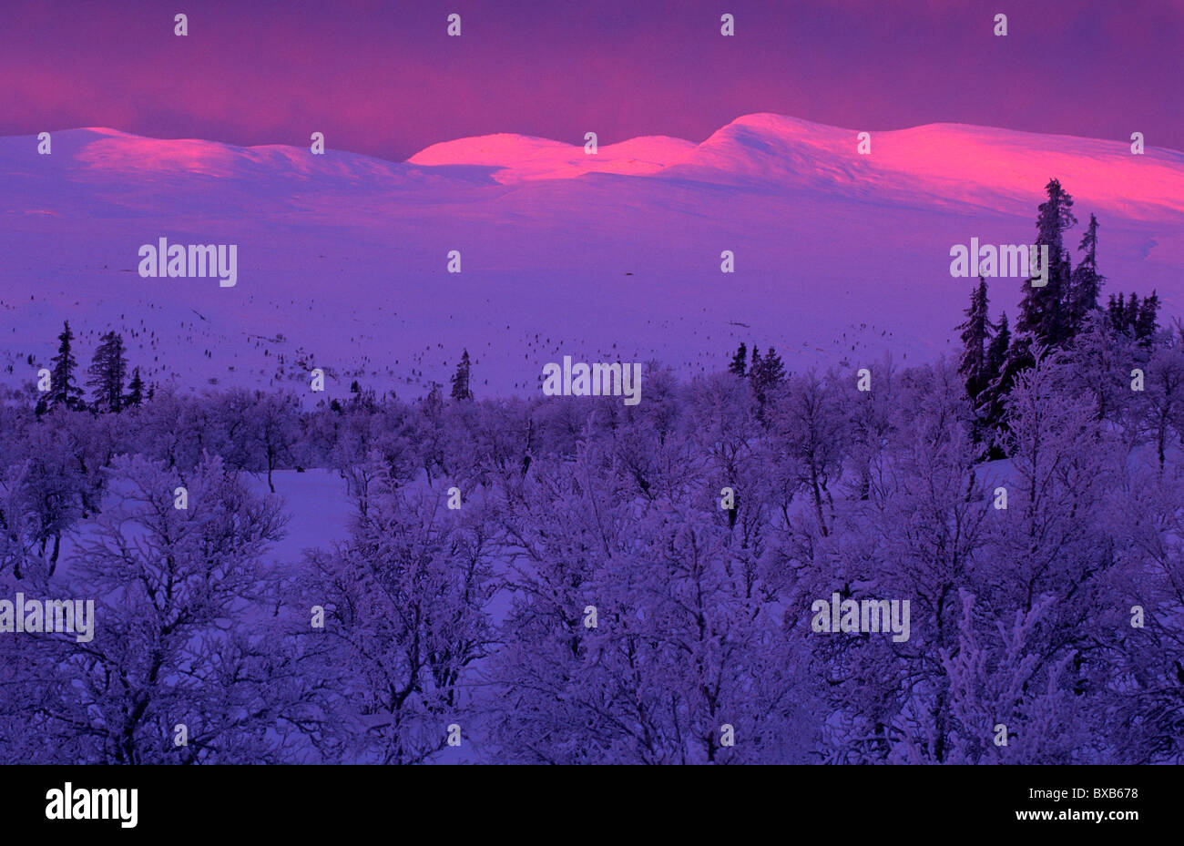 Sunset in winter - Stock Image